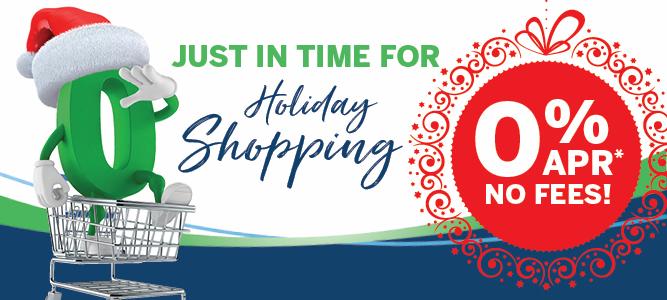 November VISA credit card promotion banner - home page - mobile
