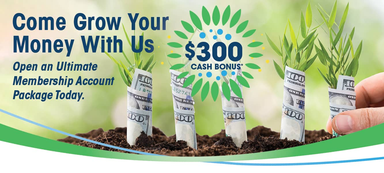 Plants wrapped in money being planted in the dirt signifying money growth.